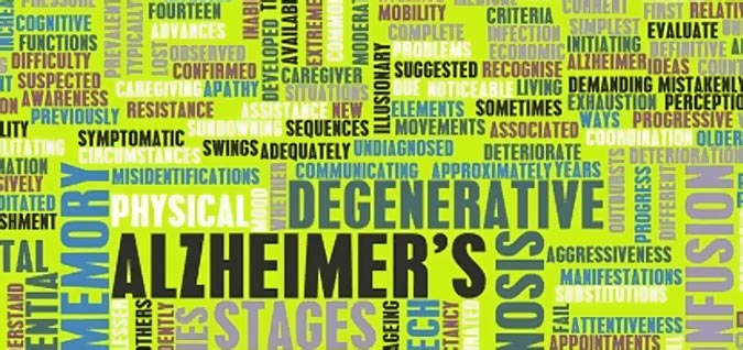 B12 may reduce the risk of alzheimer's disease
